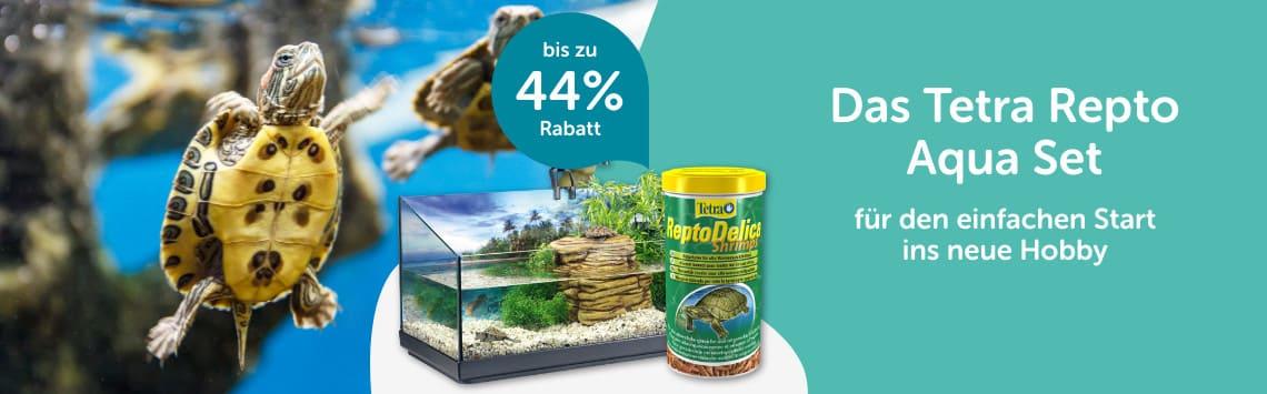 bis zu 44% auf Aquaterrarium