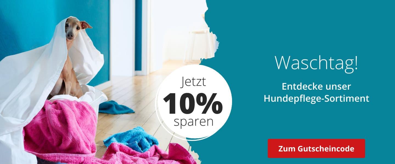 10% auf Hundepflege