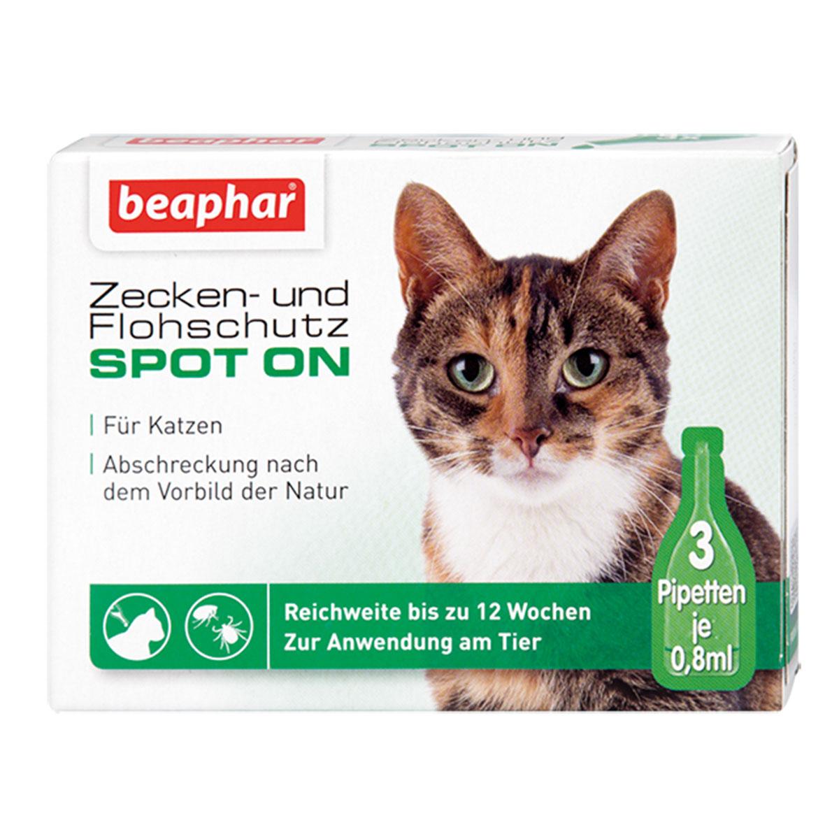 flohmittel parasitenschutz f r katzen g nstig bei zooroyal