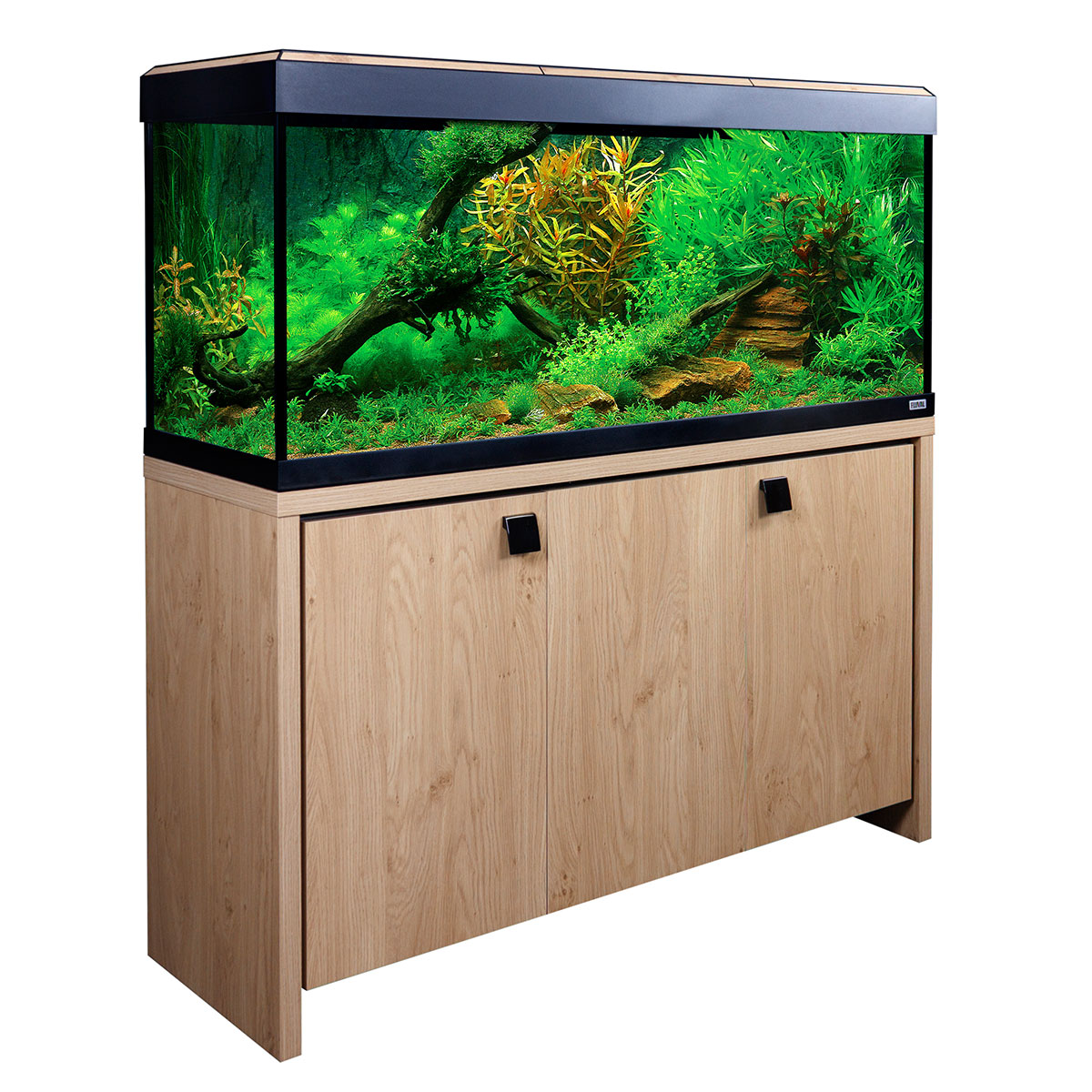 fluval aquarium roma 240 kombination g nstig kaufen bei zooroyal. Black Bedroom Furniture Sets. Home Design Ideas