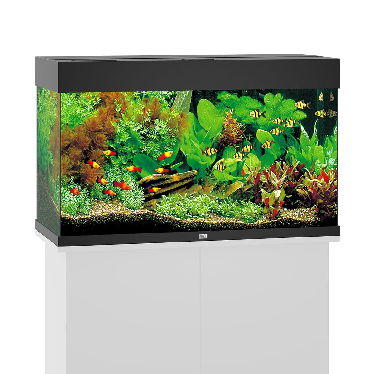 juwel rio 125 led komplett aquarium ohne schrank bei zooroyal. Black Bedroom Furniture Sets. Home Design Ideas
