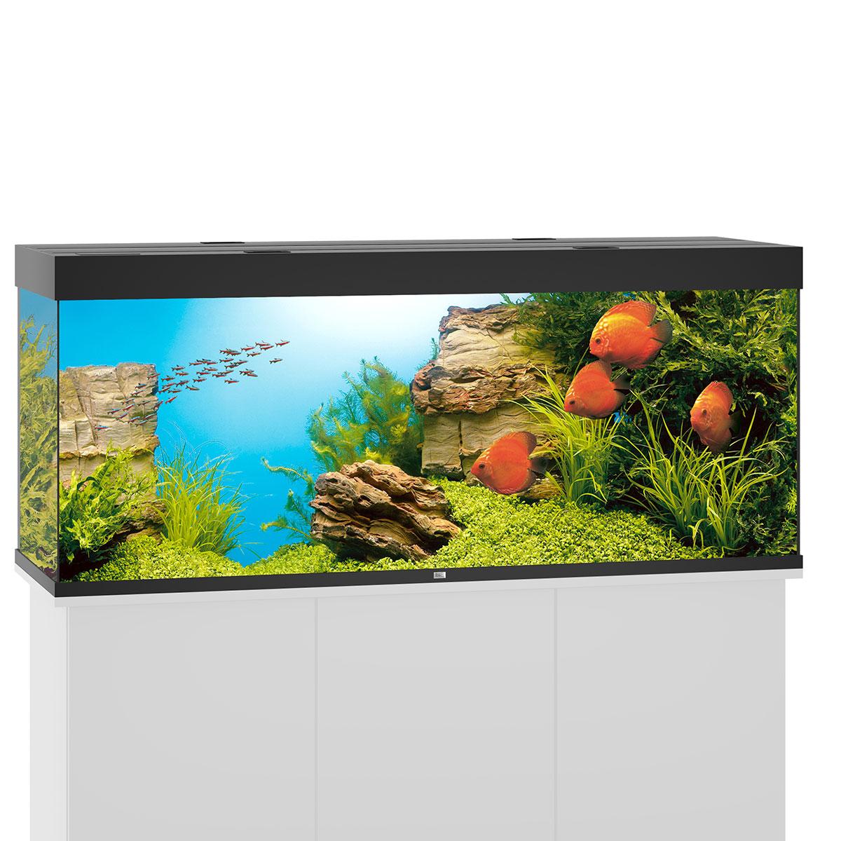 juwel rio 450 led komplett aquarium ohne schrank bei zooroyal. Black Bedroom Furniture Sets. Home Design Ideas