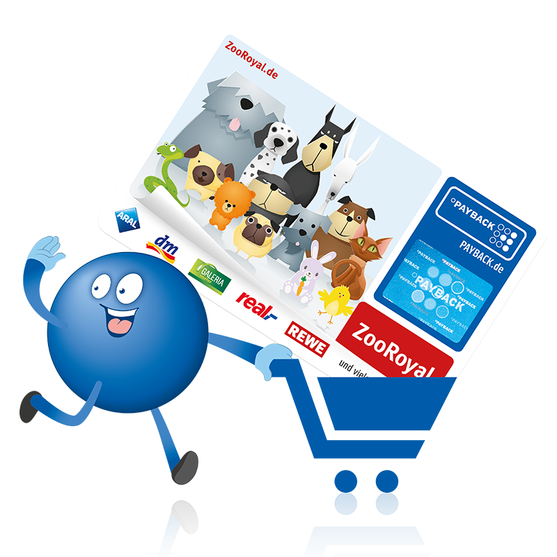 Payback Kundenkarte