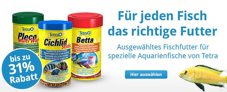Für jeden Fisch das richtige Futter, jetzt bis zu 31% sparen!
