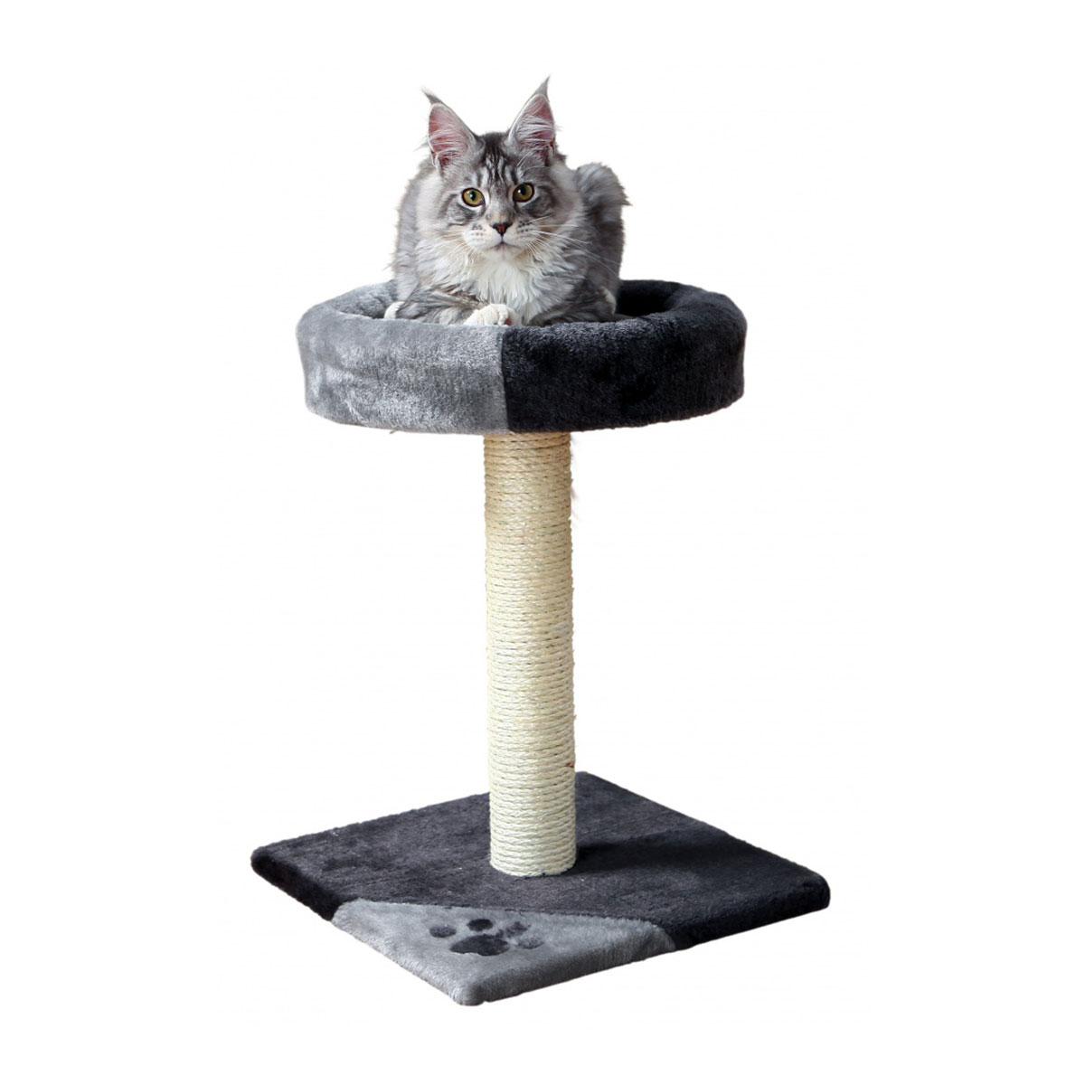 trixie kratzbaum tarifa 52 cm grau schwarz kaufen bei zooroyal. Black Bedroom Furniture Sets. Home Design Ideas