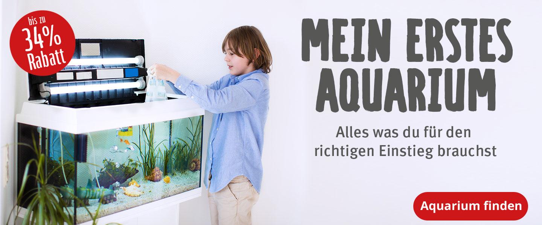 Mein erstes Aquarium - bis zu 34% Rabatt auf alles was du für den Einstieg in die Aquarienwelt benötigst