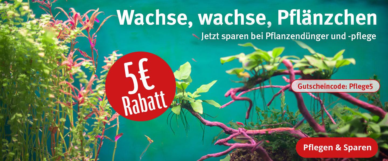 5€ Rabatt auf Pflanzendünger und Pflanzenpflege