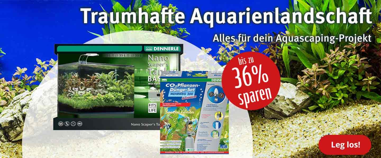 Aquascaping - bis zu 36% Rabatt + Gewinnspiel