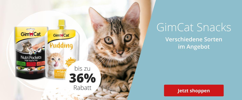 GimCat im Angebot