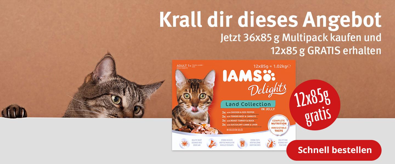 IAMS 36+12 gratis