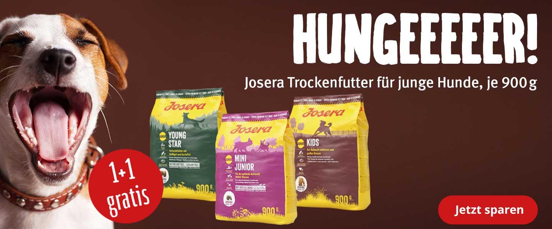 Josera 1+1 gratis