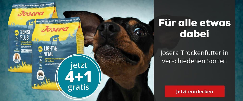Josera Insect Dog 4+1 gratis