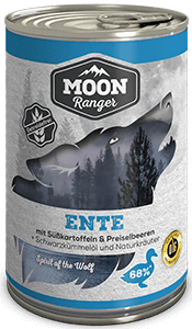 Moon Ranger Ente