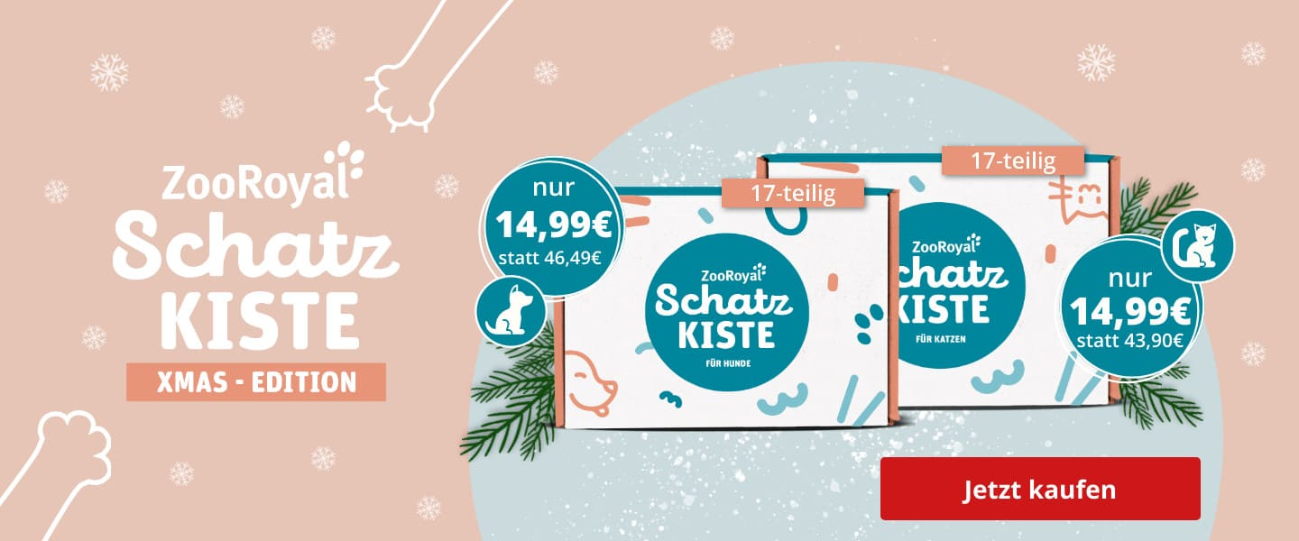 ZooRoyal Schatzkiste in der XMAS Edition