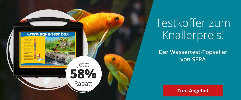 58% Rabatt auf Sera Wassertest-Topseller