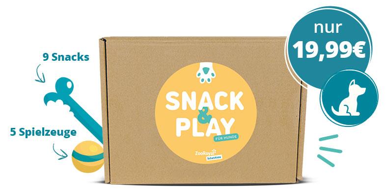 Schatzkiste in der Snack & Play Edition für Hunde