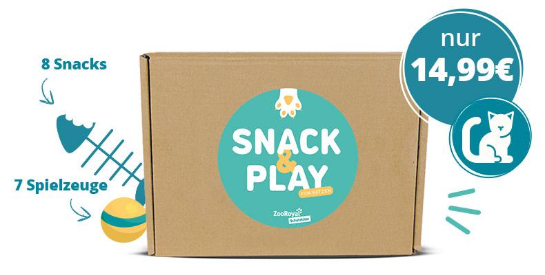 Schatzkiste in der Snack & Play Edition für Katzen