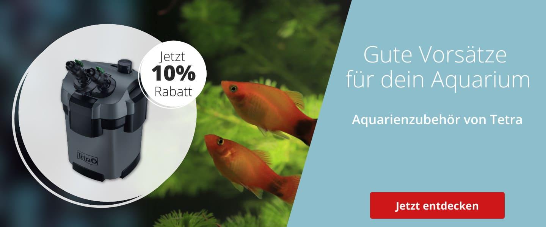 Tetra Zubehör & Pflege mit 10% Rabatt