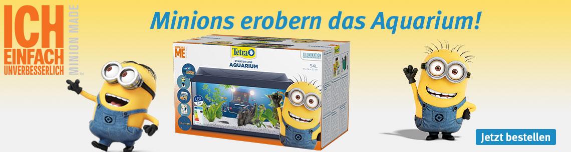 Tetra Minions Special