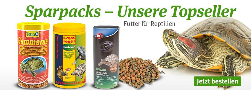 Spapacks Topseller - Jetzt zugreifen!