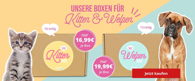 Schatzkiste für Welpen & Kitten