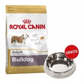 Royal Canin Bulldog Adult 12kg + Edelstahlnapf silber gratis