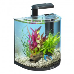 Tetra AquaArt Explorer Line Halfmoon Komplettaquarium 30l Crayfish