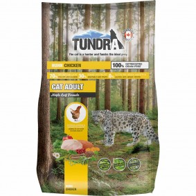 Tundra Cat Chicken