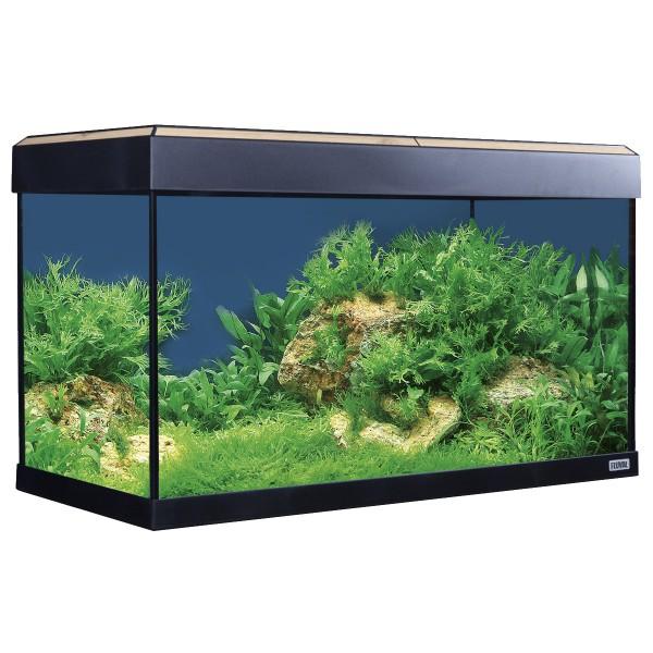 Fluval Aquarium Roma 125 mit Dekorstreifen - Eiche