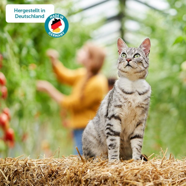 ZooRoyal Minkas Naturkost Multipack Kitten