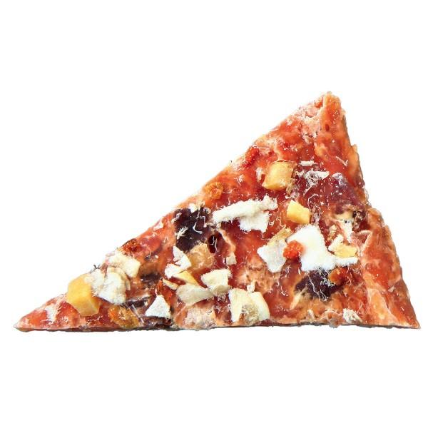 Trixie Hundesnack PREMIO Chicken Pizza 100g