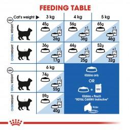 ROYAL CANIN INDOOR 27 Trockenfutter für Wohnungskatzen