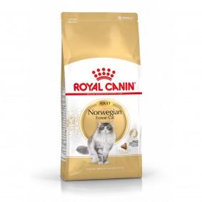 Royal Canin Katzenfutter Norwegische Waldkatze