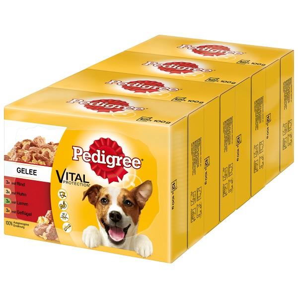 Pedigree Adult Auswahl in Gelee 48x100g