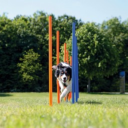 Trixie Dog Activity Agility Slalom Stangen