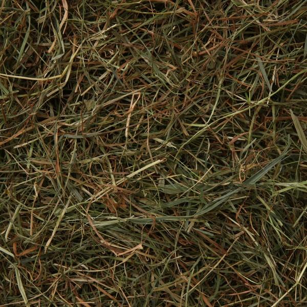 Vitakraft Vita Verde Löwenzahn 500g für Nager