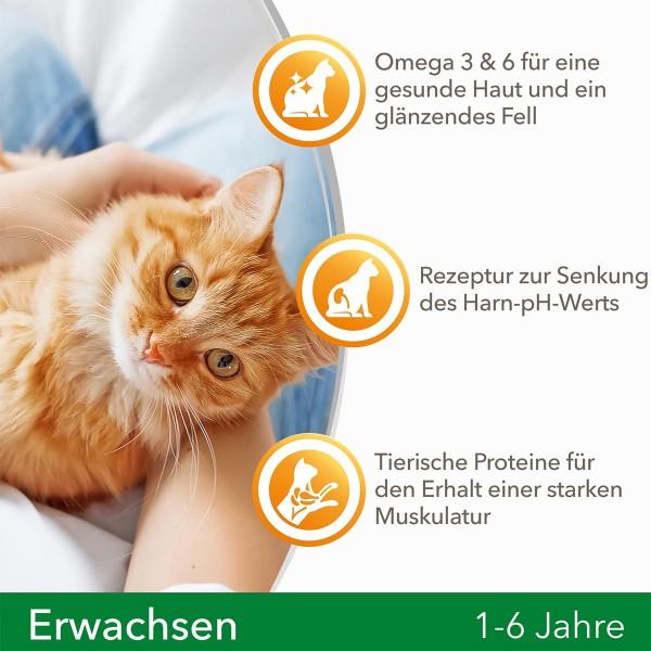 IAMS for Vitality ausgewachsene Katzen mit Lamm