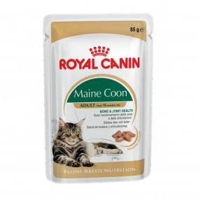 Royal Canin Feline Breed Nutrition Maine Coon 12x85g