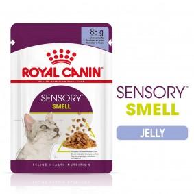 Royal Canin Sensory Smell Jelly