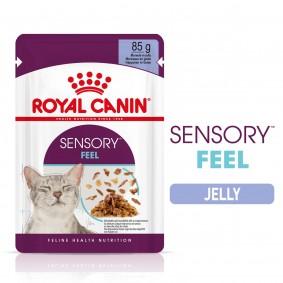 Royal Canin Sensory Feel Jelly