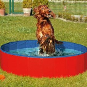 Karlie Doggy Pool Hundepool