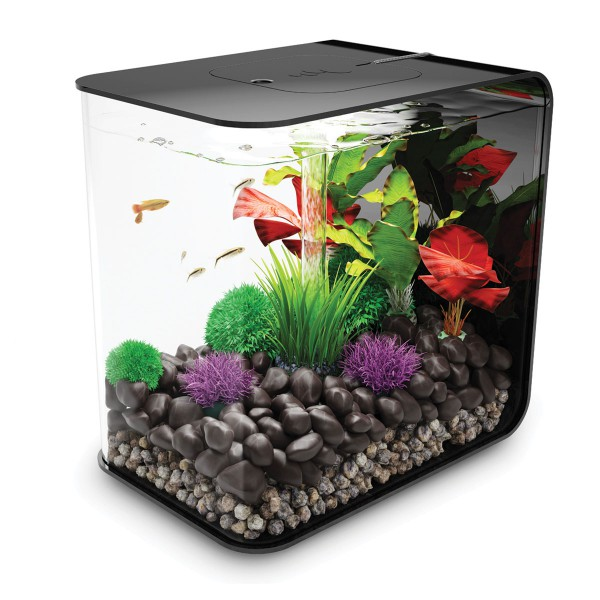 biOrb Flow LED Aquarium schwarz - 30 Liter