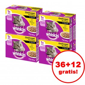 Whiskas 1+ Geflügelauswahl in Sauce 12er Multipack 36 plus 12 gratis