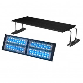 AquaLight LED weiß/blau IPX