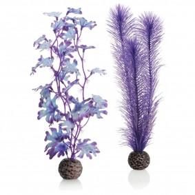 biOrb Kelppflanze violett