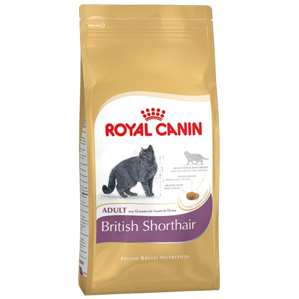 Royal Canin Katzenfutter British Shorthair