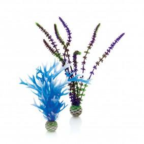 biOrb Aquariumpflanzen-Set Easy Plant blau/violett M 2Stück