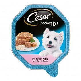 Cesar Senior 10+ mit zartem Kalb und Reis in Gelee 24x150g