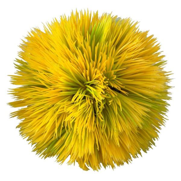 EBI Aquarium Dekoration Plant Ball - Gelb