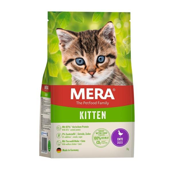 Mera Cat Kitten Ente